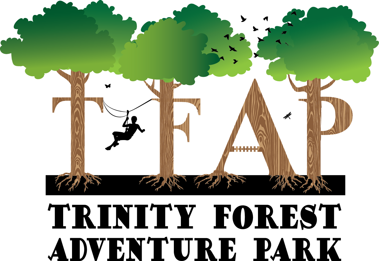 TFAP Logo